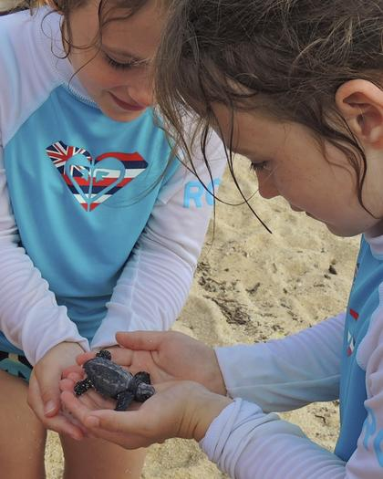 Twins Allison (left) and Lauren (right) examine a newly hatched olive ridley sea turtle.