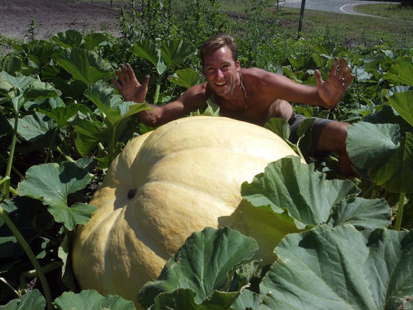 Jimmy Spencer, owner of Pond Hill Farm in Harbor Springs, is seen here with one of his giant pumpkins. Area farmers report this could be one of their best pumpkin seasons on record.