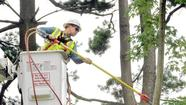 PSC to hear from utilities on derecho storm response