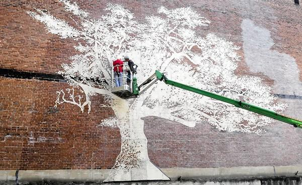 Artists Adam Niklewicz (at left on bucket lift) of North Haven and J.D. Richey of New Haven work side by side on mural of the Charter Oak at the former synagogue at 215 Pearl St., in Hartford. The 30 by 45 foot water-activated mural is a stencil glaze of the iconic tree. The temporary glaze on the brick surface is activated by moisture. The opening reception is planned for Sept. 20 at 5:30 p.m. at the synagogue.