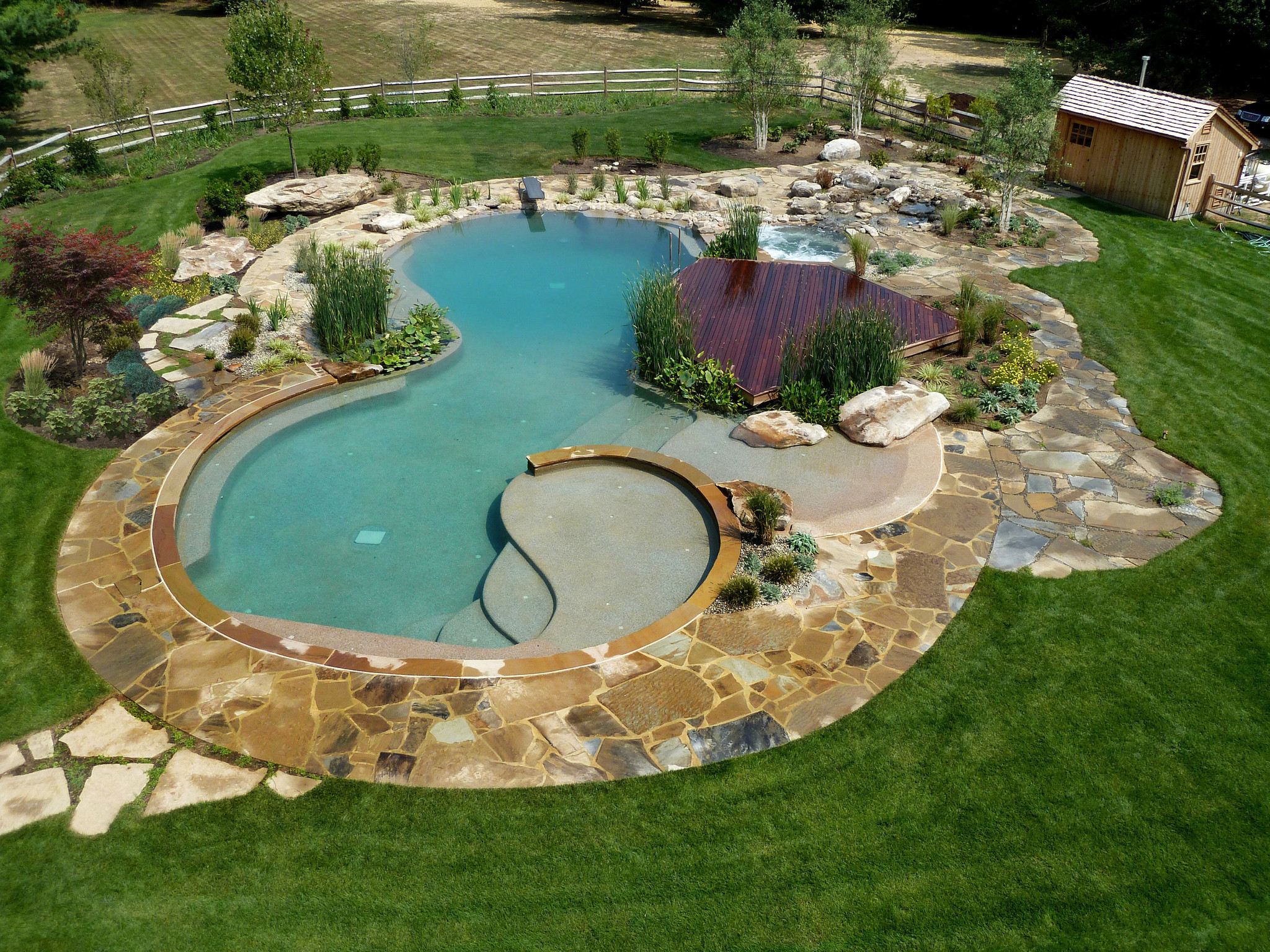 Natural swimming pools la times for Sustainable swimming pools