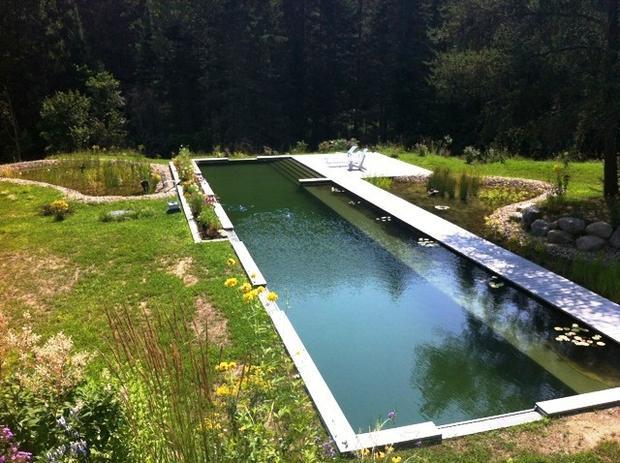 Natural swimming pools la times for Natural swimming pools los angeles
