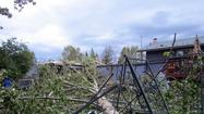 Downed Trees Still Pose Problems as New Storm Looms