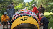 Photos: Yarn Bombing at WSU