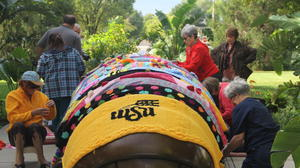 Wichita State brightens up with yarn bomb