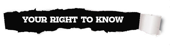 Daily Press Your Right to Know logo