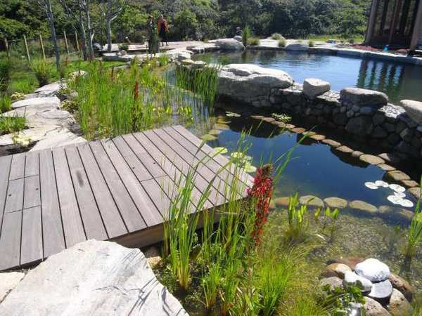 BioNova built this bio-filtration swimming pool for a client on Nantucket in Massachusetts.