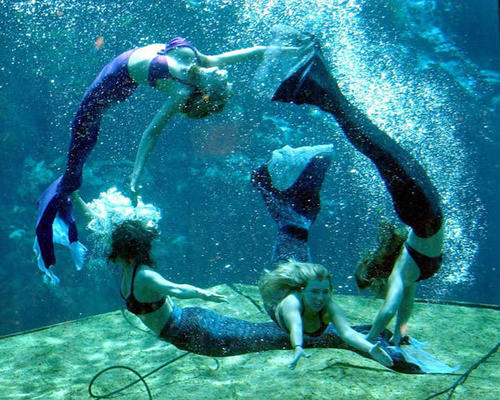 """Weeki Wachee Springs mermaids (from left) Crystal, Jessica, Megan and Kelle, during a performance of the """"Little Mermaid"""" underwater show at the spring in Weeki Wachee, Fla., Friday, Sept. 12, 2003. Open since 1947, the spring is one of Florida's oldest attractions."""