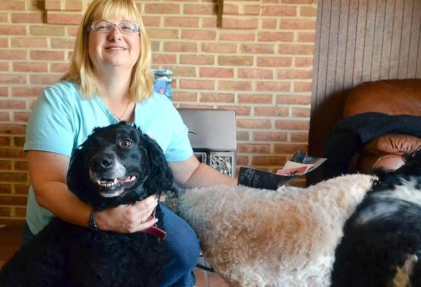 Marcia Dougherty keeps her three dogs smelling sweet. She rubs perfume samples on her two Labradoodles, Harley (left) and Lilly (center), and on her poodle, Lacey.