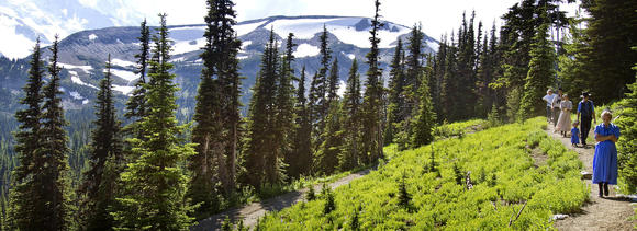 Sunrise area of Mount Rainier National Park
