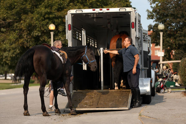 A horse is unloaded from a trailer at Chicago Police Mounted Patrol headquarters at South Shore Cultural Center in Chicago on Monday.