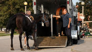 2 Chicago police horses injured during break-in at stable