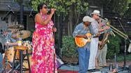 "Two veteran Hampton Roads blues performers -- <a href=""http://bobbyblackhat.com/"" target=""_blank"">Bobby ""BlackHat"" Walters</a> of Newport News and <a href=""http://www.themichaelclarkband.com/"" target=""_blank"">Michael Clark</a> of Norfolk -- will add musical spice to <a href=""http://www.festevents.org/mini-site/town-point-ribfest"" target=""_blank"">Town Point Ribfest</a>, a free festival happening Saturday."