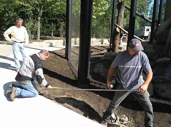 Construction workers put the final touches on the new bobcat exhibit at Cosley Zoo.