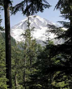Mount Rainier as seen from the Wonderland Trail.