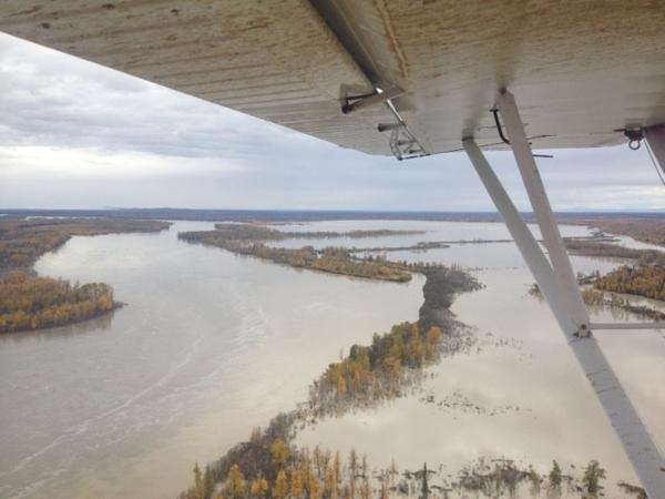 Flat Horn Lake and the Big Susitna are pictured at flood stage.