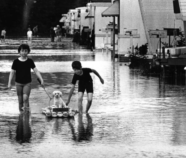 Heavy rains didn't bother two children who live in Cook County Mobile Homes trailer park in Northfield Township. The two took the family dog for a ride on a rubber raft June 10, 1967.