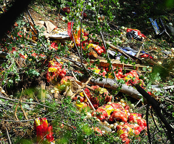 A tractor-trailer that skidded down a steep embankment Monday left a load of onions strewn across the slope.