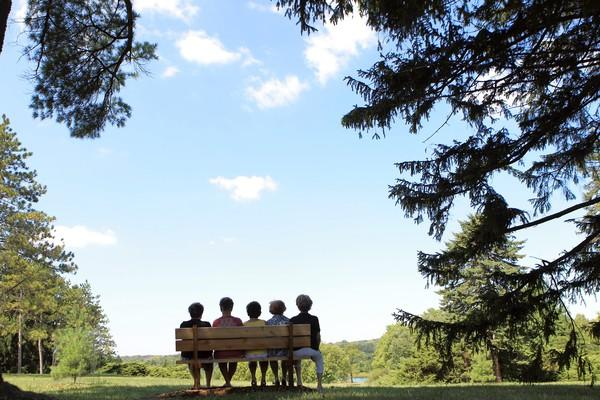 Five friends since grade school, now each around age 75 — Kathy Sedlack, from right, Mary Jane Manley, Judy Claus, Miriam Bryant and Rosalie  Lawinger — sit on a bench inscribed with their names at Morton Arboretum in Lisle. Experts say developing and maintaining friendships, as the women have, gives you the best opportunity to age successfully.