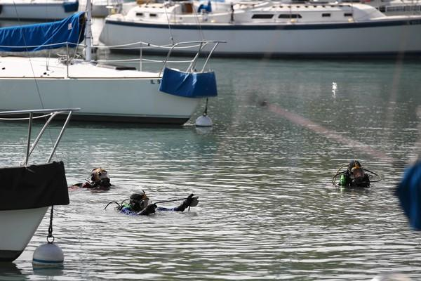 Divers from Wilmette and Northbrook search for missing Northwestern University student Harsha Maddula on Wednesday at Wilmette Harbor near Gillson Park. Maddula has been missing since early Saturday.