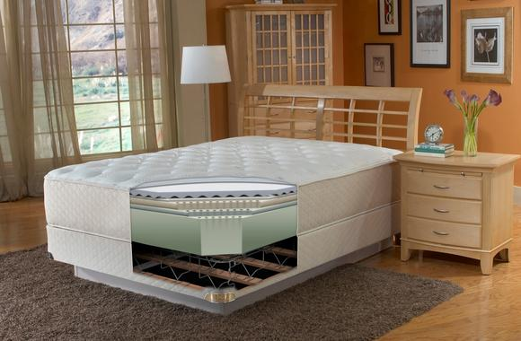 Tempur-Pedic to buy Sealy