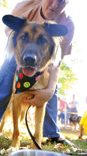 Bark in the Park begins at 10 a.m. Saturday, Sept. 29, at Jonathan Hager House and Museum, City Park, off Virginia Avenue, Hagerstown.