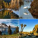 Best parks and wilderness areas in California