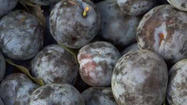 Farmers Markets: Damson plums worth preserving
