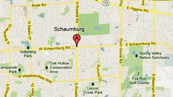 Possible cougar sighting reported in Schaumburg tribunedigital