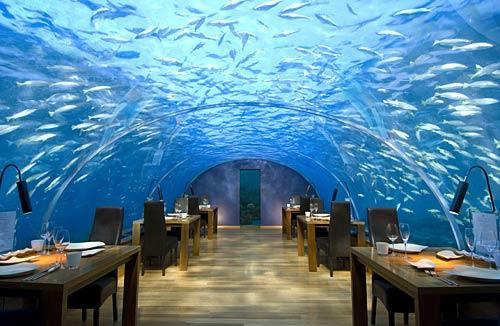 """Ithaa Undersea restaurant sits 16 feet below sea level at the <a href=""""http://conradhotels1.hilton.com/en/ch/hotels/index.do?ctyhocn=MLEHICI"""">Conrad Maldives Rangali Island</a>, a hotel resort in Hilton's luxury brand that occupies two islands. Maldives is a country of almost 1,200 islands about 300 miles from the southernmost points of India and Sri Lanka."""