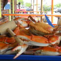 Ocean City: Steamed crabs at Bahama Mama's