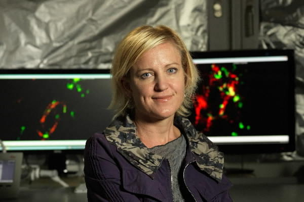Swartz studies how biologic fluids move through tissue and how that movement affects human health. This work helps explain how the immune system responds to tumors, and how tumors resist cellular attack. Swartz's research draws on biophysics, molecular genetics, engineering and immunology to better comprehend diseases such as cancer, and how they can be fought.