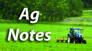 AG NOTES: Fall cleanup controls spring diseases