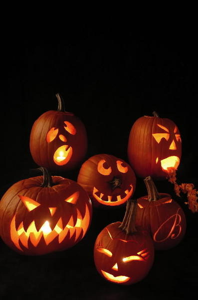 "A <a class=""taxInlineTagLink"" id=""EVFES000167"" title=""Halloween"" href=""/topic/arts-culture/halloween-EVFES000167.topic"">Halloween</a> celebration for the entire family, <a class=""taxInlineTagLink"" id=""HPR7"" title=""Six Flags New England"" href=""/topic/economy-business-finance/tourism-leisure-industry/amusement-theme-parks/six-flags-new-england-HPR7.topic"">Six Flags New England</a> is transformed into Halloween central with Halloween themed shows, street entertainment plus haunted attractions Midnight Mansion and Wicked Woods during <a href=""http://findlocal.courant.com/listings/fright-fest-agawam-mass""><a class=""taxInlineTagLink"" id=""EVFES000011935"" title=""Six Flags Fright Fest"" href=""/topic/arts-culture/holidays/six-flags-fright-fest-EVFES000011935.topic"">Fright Fest</a>.</a>"