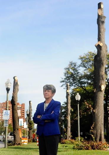 Councilwoman Mary Pat Clarke amid shorn Charles Street trees