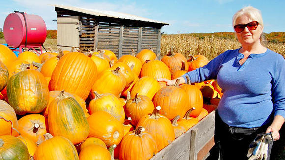 Among the pumpkins Wanda Cherwinski grew and harvested on her farm this year were 900 basketball-sized pumpkins for the Elks¿ Pumpkin Patch event for children, which provides free fun, treats and a pumpkin to each child who attends.