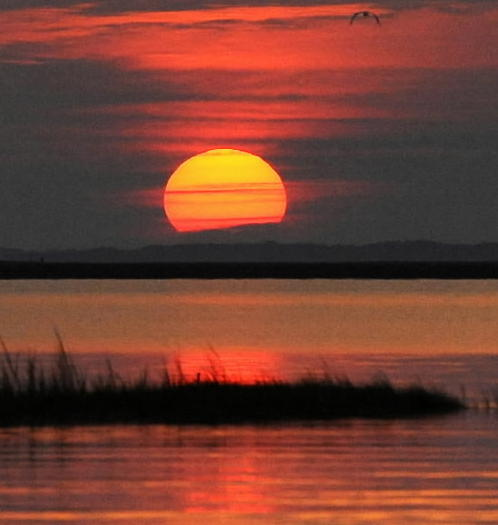 Sun rises over Chesapeake Bay