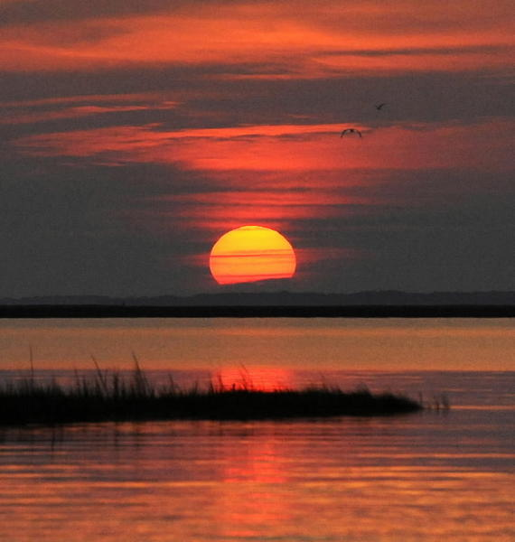 Dawn on the Chesapeake Bay. Two environmental groups contend that pollution trading would worsen the estuary's water quality problems.