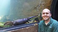 Like/Dislike: Steve Dombroskie, zookeeper