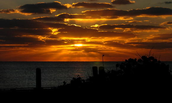 Sunrise, as seen from John U. Lloyd State Park near Port Everglades.