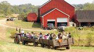 Hayrides, pumpkins and more; county has a scary amount of activities