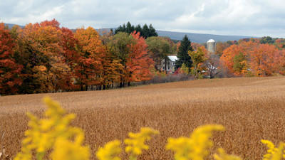This scene is along State Route 985 near Jennerstown and shows the colors of fall in Somerset County.