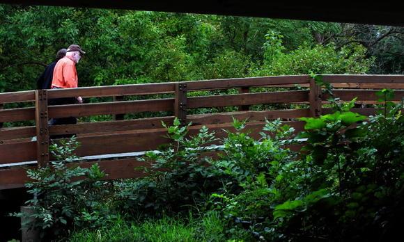 Changing leaves at Fullersburg Woods Forest Preserve, in Oak Brook