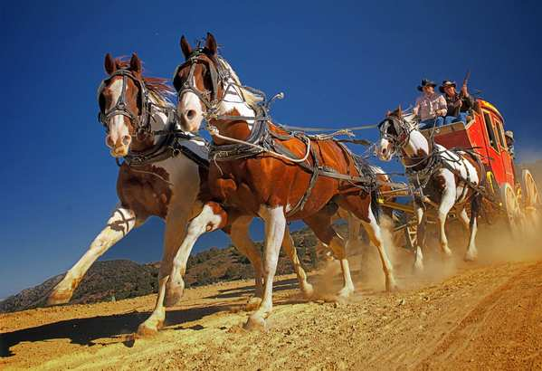 "TNT Stagelines offers authentic stagecoach rides that can reach up to 27 mph, a speed considered ""flat out"" back in the Old West."