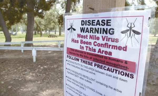 Burbank, Glendale and La Canada have all seen cases of West Nile virus this year.