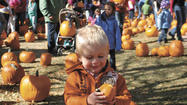 Having fun at the Pumpkin Patch