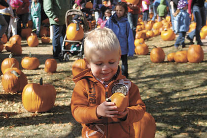 Logan Murrow was among the children at Sunday's Pumpkin Patch admiring their pumpkins ¿ in Logan's case, a wee pumpkin.