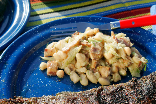 "Toss drained white beans with thinly-sliced fennel, crisp bacon, garlic, lemon juice, cumin, olive oil and a dash of hot sauce in this full-flavored yet simple salad. <a href=""http://www.latimes.com/features/la-fo-camprec18b-2008jun18,0,2525972.story"">Click here for the recipe.</a>"
