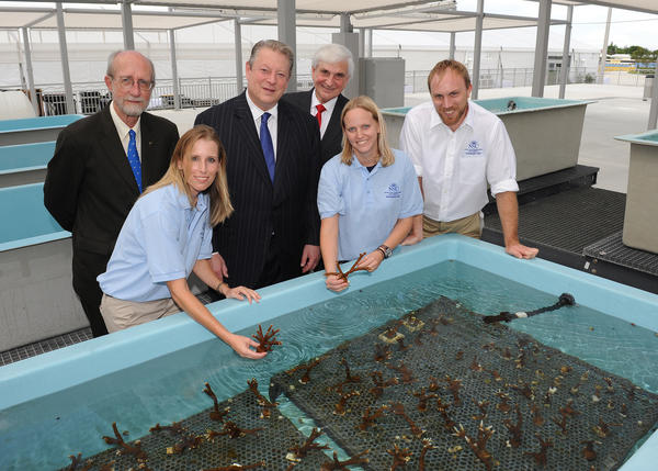 Graduate students demonstrate Nova Southeastern University's (NOVA) onshore coral reef nurseries, with Richard E. Dodge, back left, former Vice President Al Gore and George L. Hanbury II. On Sept. 27 former Vice President Al Gore spoke at the grand opening of NOVA's Center of Excellence for Coral Reef Ecosystems Research. To see more photos from Society Scene's Broward edition, visit www.Facebook.com/SocietyScene.