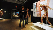PICTURES: Bodies Revealed an exhibit at the Da Vinci Center in Allentown.
